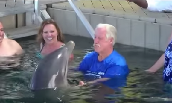 Dolphin spitting water at human friend will be the funniest thing you will see today!