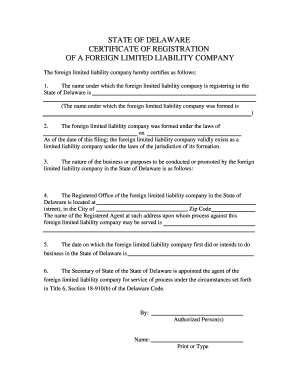 Foreign LLC - web.doc - corp delaware