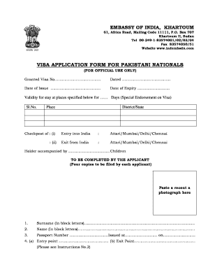 Fillable Online Online Visa Fillable Application For India From Pakistan Form Fax Email Print Pdffiller