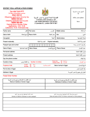 11201 Visa Application Form For Egypt Emby In Nigeria on