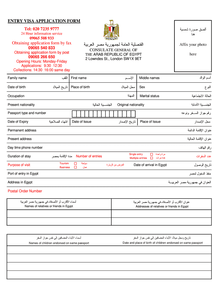 Egypt Visa Application Form Download Pdf Fill Online Printable Fillable Blank Pdffiller