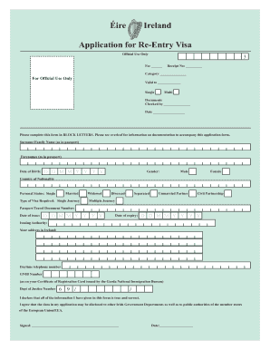 Ireland Re Entry Visa - Fill Online, Printable, Fillable, Blank ...