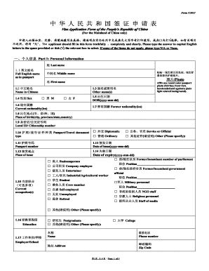 Chinese Embassy Visa - Fill Online, Printable, Fillable, Blank ...