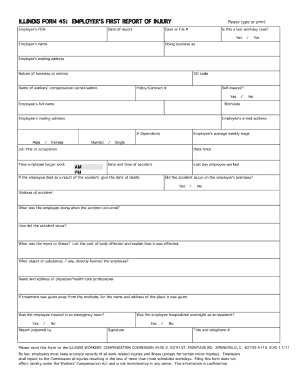 Il 45 Form - Fill Online, Printable, Fillable, Blank | PDFfiller