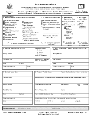 nys joint application form