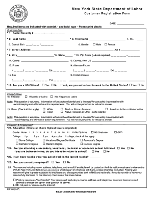 New York State Department Of Labor Customer Registration Form ...