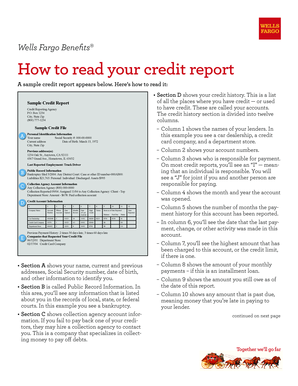 Sample Credit Report Forms And Templates Fillable