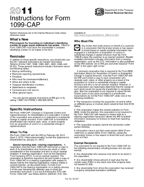 fillable forms 1099 cap