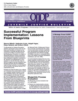 successful program implementation lessons from blueprints form