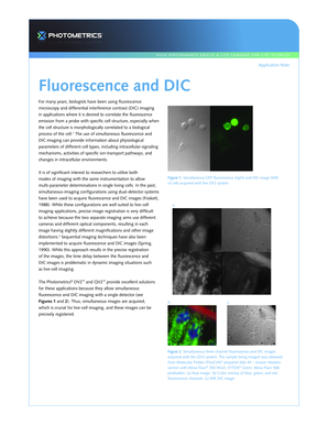 Fluorescence and DIC - Photometrics