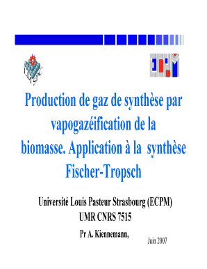 gaz de synthese biomasse vapogazeification form