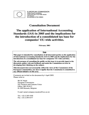 International Accounting Standards (IAS) and a consolidated tax ... - ec europa