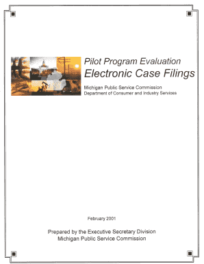Electronic Case Filings Evaluation Report - efile mpsc state mi
