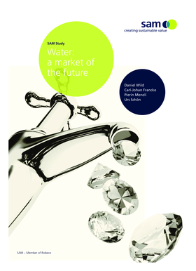 Water: a market of the future