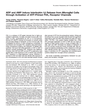ADP and AMP Induce Interleukin-1 Release from Microglial Cells ... - jneurosci