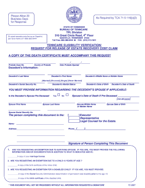 tenncare attestation form