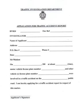 Traffic Accident Report
