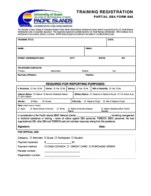 sba personal financial statement Forms and Templates - Fillable ...