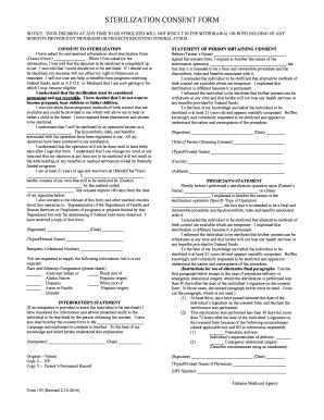 looking for alaska pdf vk