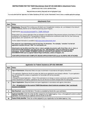 instructions for the tiger discretionary grant sf 424 4040 form