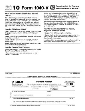 2010 individual tax return form