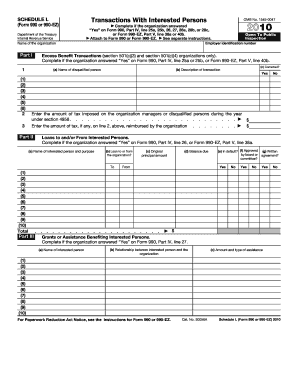 irs form 990 schedule l 2011