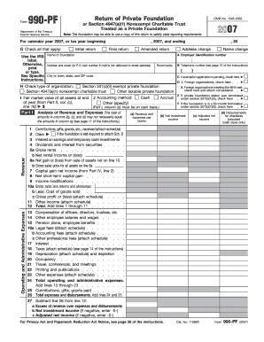 2007 Form 990-PF (Fill-In Capable)