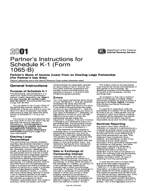 form 1065 k 1 instructions