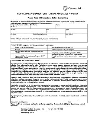 1090475 Safe Link Printable Application Form on kmart job, california job, safeway job, for employment, blank college, dairy queen job, restaurant job, rental credit, generic employment,