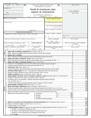 2013 Form PR 480.2 Fill Online, Printable, Fillable, Blank - PDFfiller