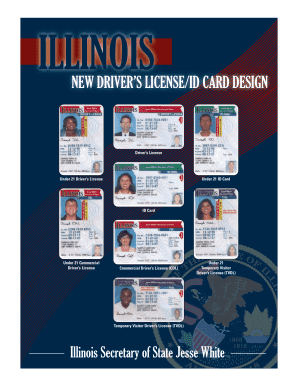 Illinois Id Template - Fill Online, Printable, Fillable ...