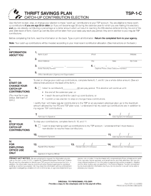 Tsp 1 c fillable 2009  form