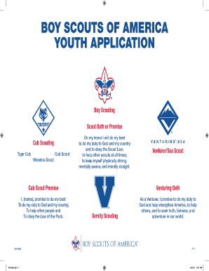 Bsa adult application filled in online