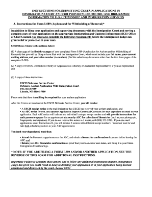 Instructions For Submitting Certain Applications In Immigration ...