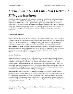 Fincen Form 114 - Fill Online, Printable, Fillable, Blank | PDFfiller