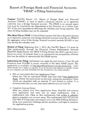 fincen form 114a instructions