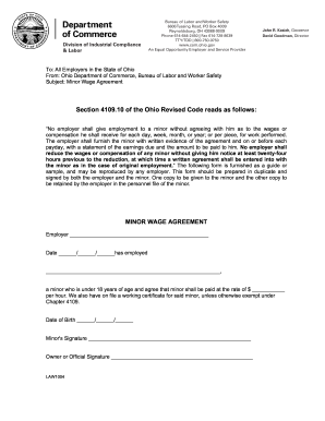 Minor Wage Agreement Ohio - Fill Online, Printable, Fillable ...