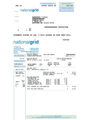 National Grid Sample Bill - Fill Online, Printable, Fillable ...