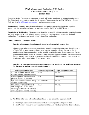 How To Fill An Action Plan Fill Online Printable