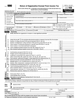 fillable 2010 form 990