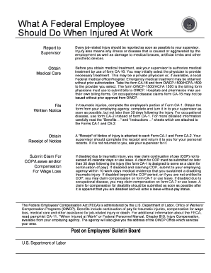 Form Ca 10 What A Federal Employee Should Do When Injured At Work ...