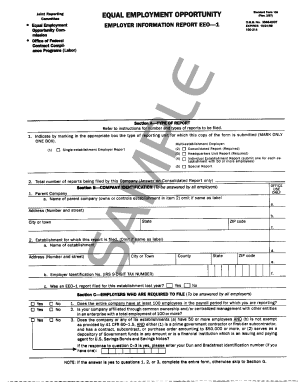 Eeoc Standard Form 100 - Fill Online, Printable, Fillable, Blank ...