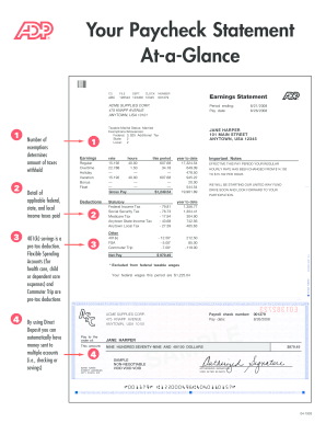 Adp Pay Stub Template - Fill Online, Printable, Fillable, Blank ...