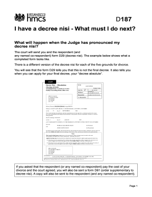 D187 I Have A Decree Nisi What Must I Do Next - Fill Online ...