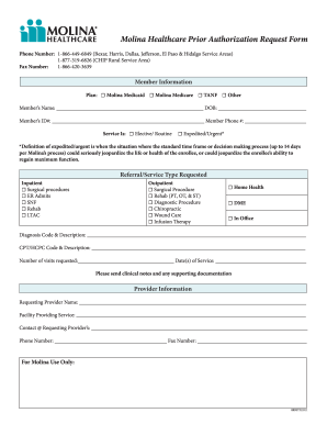 Get molina prior authorization form - PDFfiller