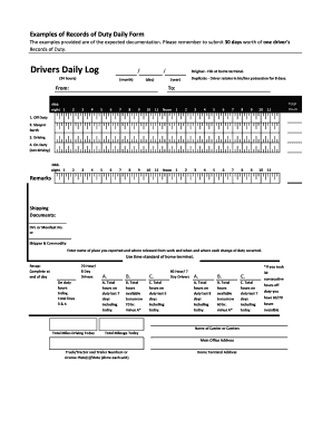 Examples of Records of Duty Daily Form