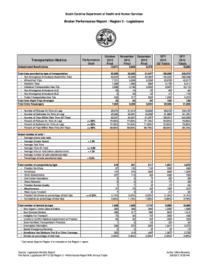 Fillable Online scdhhs Broker Performance Report - Region 3 ...
