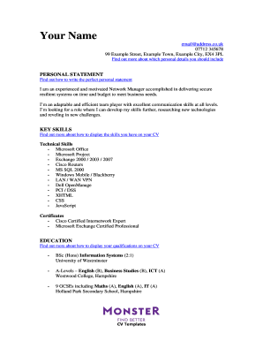 14216227-IT-Network-Manager-CV-Template.doc