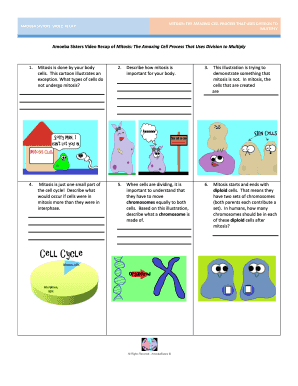 Amoeba Sisters Video Recap Of Mitosis The Amazing Cell ...