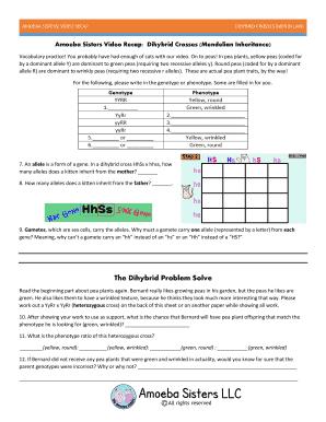 Worksheet Dihybrid Crosses Answer Key - best worksheet